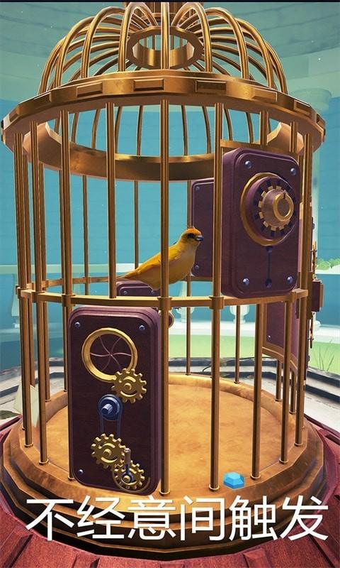 神秘的鸟笼游戏
